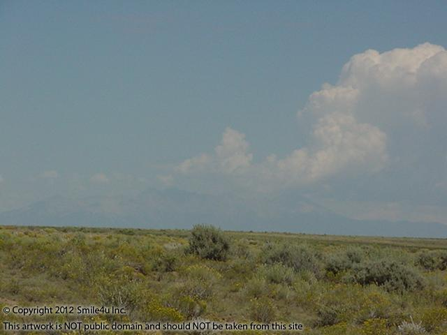 101977_watermarked_pic 750.jpg